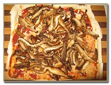 pizza with oyster mushrooms